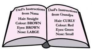 Dad's Instructions