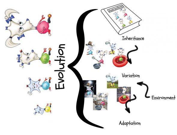 DinkyAmigos_EvolutionWorkshopHeader